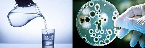 Phát hiện chất gây ung thư trong nước đun sôi để nguội