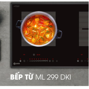 bep-tu-2-vung-nau-dmestik-ml299-dki-99