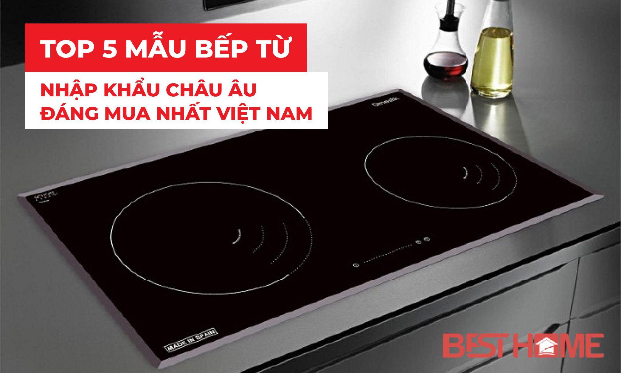 Top 5 mẫu bếp từ nhập khẩu Châu Âu đáng mua nhất Việt Nam post image